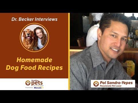 Dr Karen Becker Best Dog Food