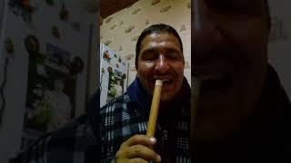 Как быстро научиться извлекать звук на курае . Играть на курае.
