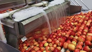 How It's Made - Apple