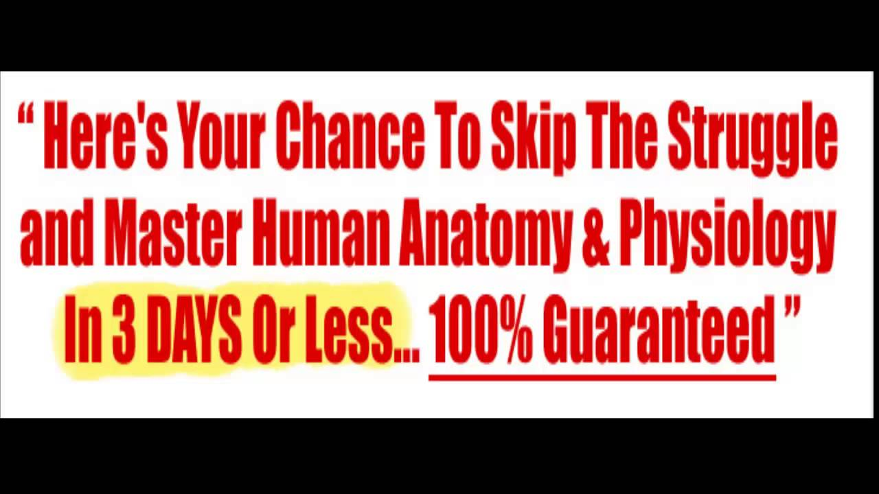 Anatomy And Physiology Book - YouTube