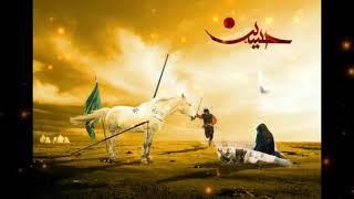 Islamic Whatsapp Status Video   Ya Hussain Ya Hussain   Muharram Status Video