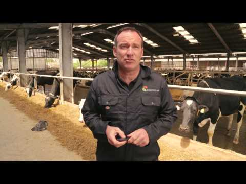 Introducing Agroserve dairy hygiene products
