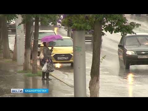 Выходные в Башкирии не будут жаркими: погода 15 июня