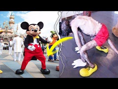 Los 7 SECRETOS Más INCREIBLES de Disney World | Disneyland