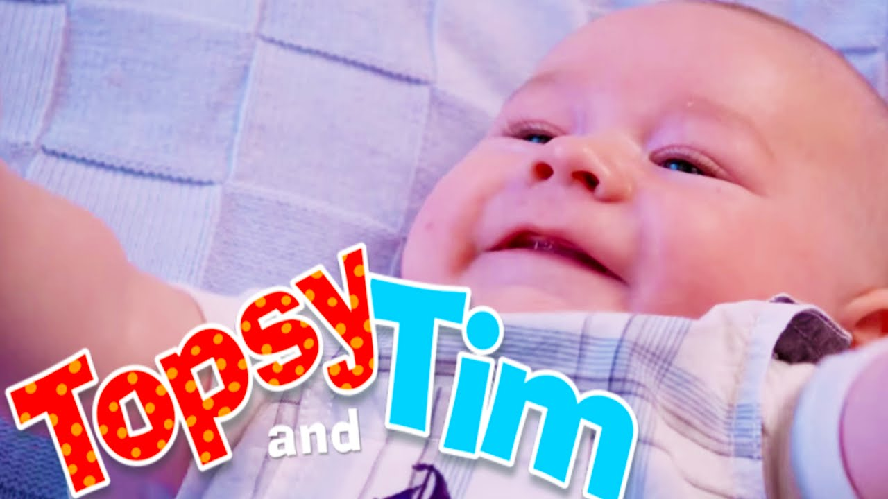 topsy tim 127 baby jack topsy and tim full episodes. Black Bedroom Furniture Sets. Home Design Ideas
