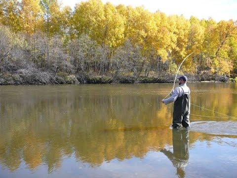 ловля нахлыстом не нахлыстовых рыб