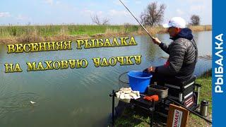 Весенняя рыбалка на удочку Ловля уклейки плотвы карася