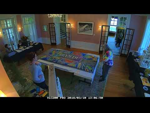 Chalkstix and the Ohio Chalk Art Guild make Public Art at the Bryn Du Mansion