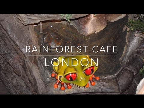 Rainforest Cafe, London for kids