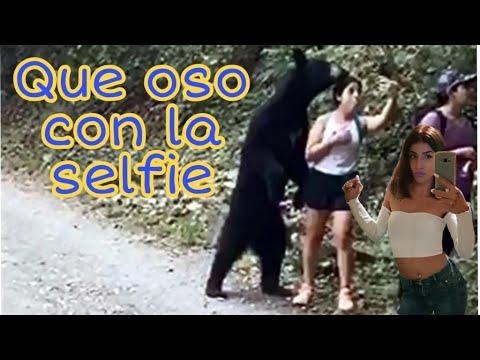 Oso sorprende a visitantes de Chipinque en Nuevo León  y se toman selfie con el oso