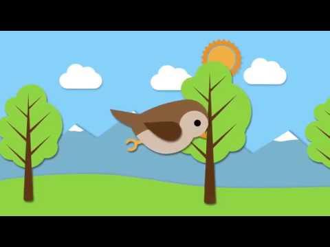 Piosenka wróbelka - Piosenki dla dzieci - YouTube