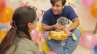 Cuddle Rejected My Cake 🙈😔 | How cuddle spent his Day | Dipika Ki Duniya | Dipika Kakar Ibrahim