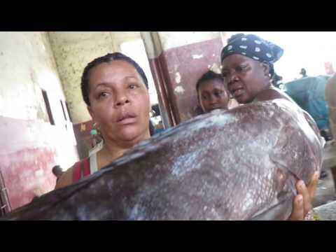 Research trip to São Tomé for SEA GASTRONOMY