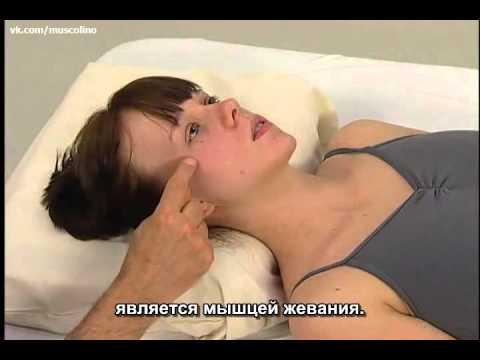 Шейный остеохондроз. Симптомы и лечение остеохондроза