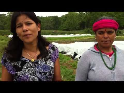 Bhutan  refugees renew farming in U.S.
