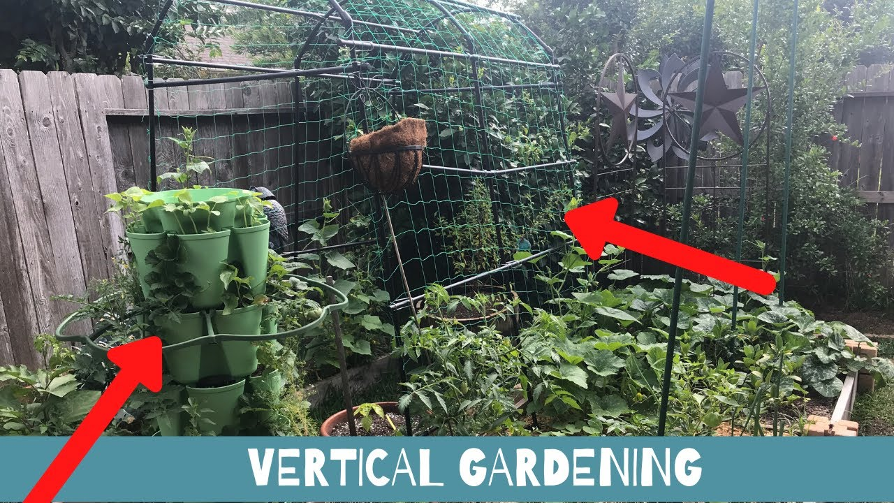 Vertical Gardening Ideas For Small Spaces - YouTube
