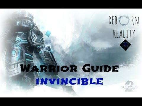 Guild Wars 2 - Level 80 Warrior Guide (Invincible)