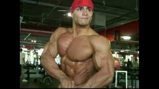 Download lagu Bodybuilding muscle bicepstriceps DVD preview Grade A Guns Vol 2 MP3