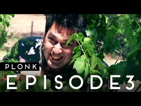 Plonk Ep 3 | Hunter Valley to Mudgee