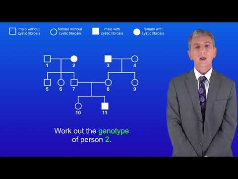 GCSE Biology (9-1) Family Trees