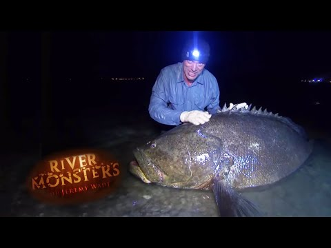 Accidently Catching A Goliath Grouper - River Monsters