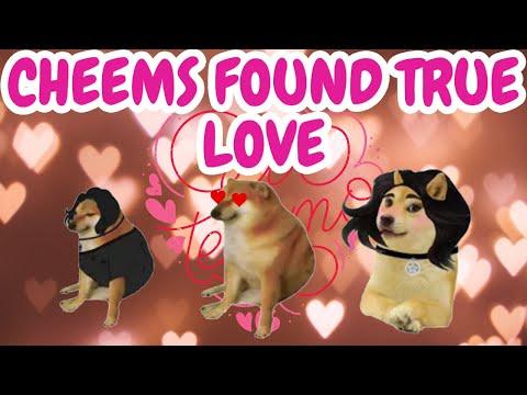 Cheems found True Love