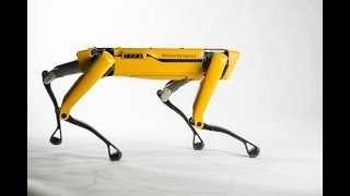 SpotMini, a robot dog dances and twerks   CCTV Enlish