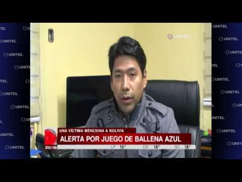 VIDEO: El juego de la 'ballena azul' llegó a Sudamérica, hay alerta en Bolivia