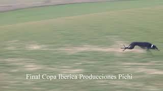 Final mas 4 Minutos de carrera  Copa Iberica 2020  21    la liebre se salvo Producciones Pichi