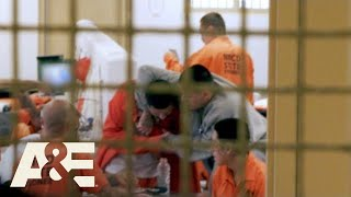 Behind Bars: Rookie Year: What's Your Problem, Bro? (Season 2) | A&E