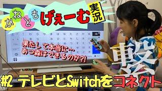 【あつまれどうぶつの森】Switchをテレビに繋いだら原始人になった声優金田朋子