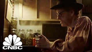 Black Market Marijuana: How To Market An Illegal Business | American Vice | CNBC Prime