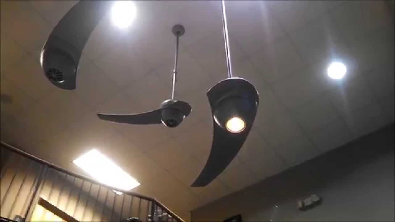 Fanimation Enigma One Bladed Ceiling Fans Youtube