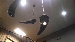 Fanimation Enigma One Bladed Ceiling Fans