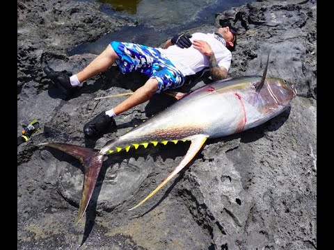 New World Record Yellowfin Tuna Off The Rocks (On A Popper)107.5KG