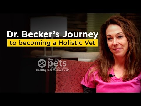 Dr. Becker's Journey to Becoming a Holistic Vet