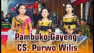 PAMBUKO GAYENG CAMPURSARI #PURWO WILIS TERBARU