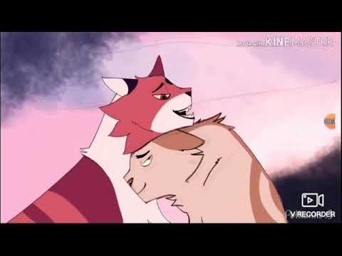 Коты воители Кленовница