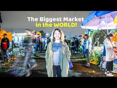 Mexico City's Largest Market | Touring Central de Abastos