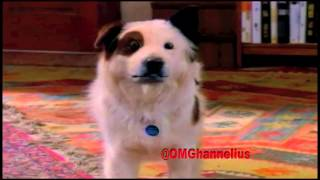 Pod People From Pasadena - Dog With A Blog - Season 2 - Episode 20 - promo - G Hannelius