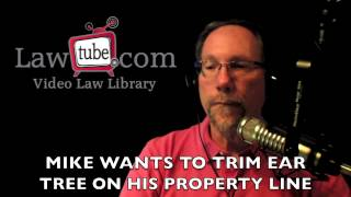 Mike wants to trim tree on property line
