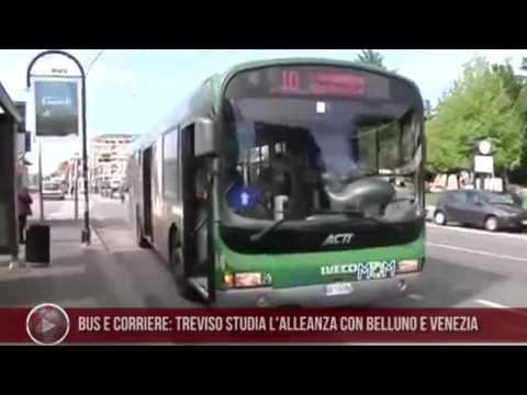 10-05-2013 Bus e corriere: Treviso studia l'alleanza con Belluno e Venezia