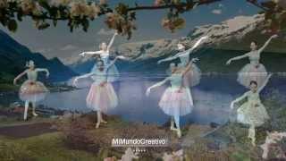 VALS DE LAS FLORES  - Tchaikovsky - (pieza musical completa)