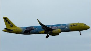 """Spirit Airlines A321 """"Dumbo Livery"""" Landing at Newark Liberty Airport"""