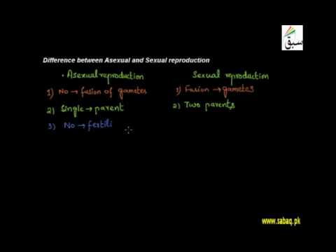 Asexual and sexual reproduction differences and similarities