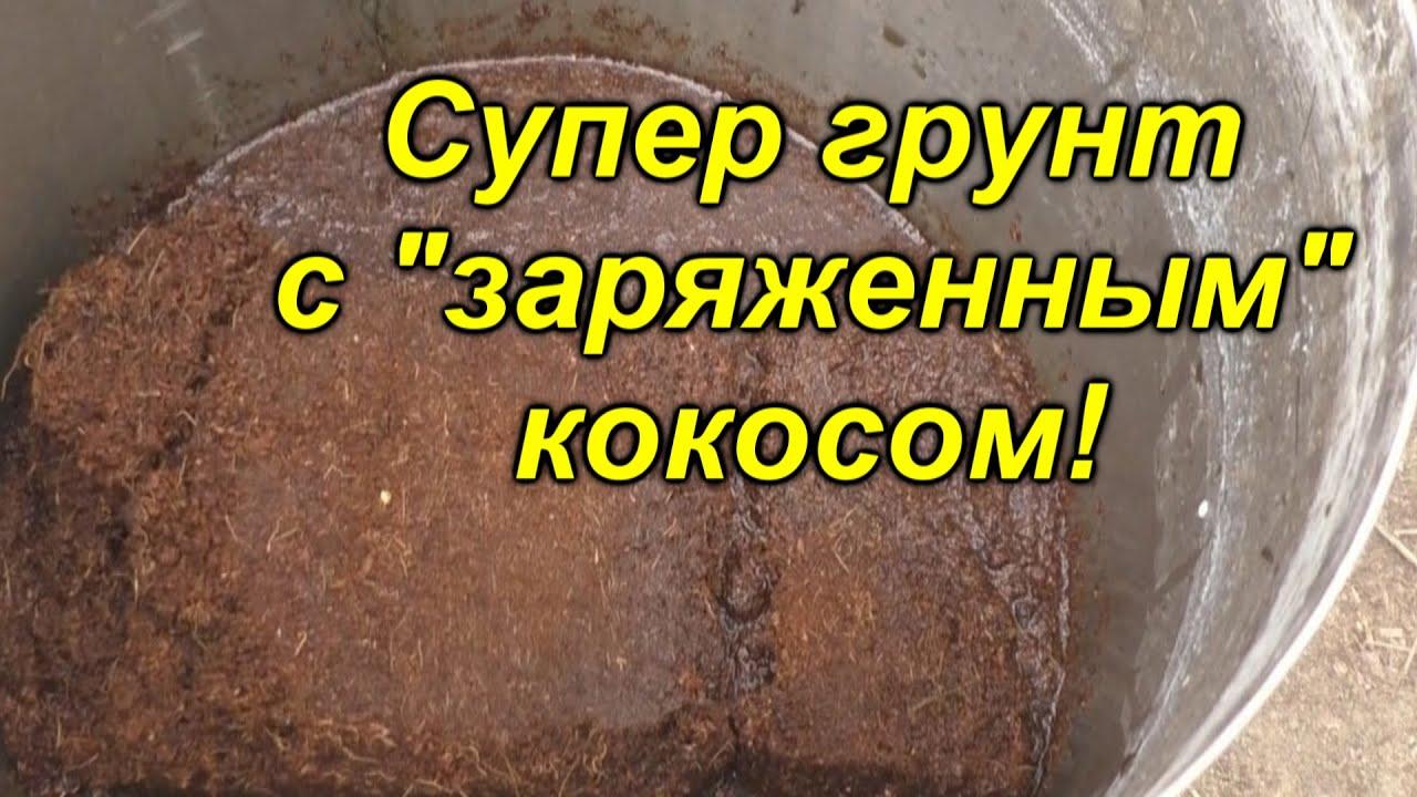"""Правильное приготовление кокосового субстрата+заправка его """"Рост концентратом"""""""