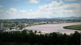 Dargaville - From Kauri Gum To Kūmara - Roadside Stories