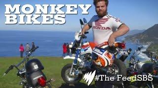 Monkey Bikes: Bikers Buying Toys I The Feed