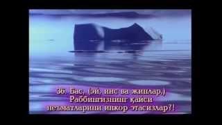 Жуда гўзал қироат-Рахмон сураси 055