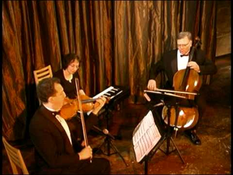 Chicago Wedding Ceremony Music Classical Trio Canon in D